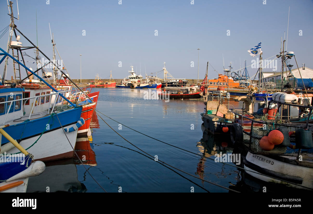 Fishing Boats at rest in the Harbour built in 1815 by Alexander Nimmo,, Dunmore East, County Waterford, Ireland - Stock Image