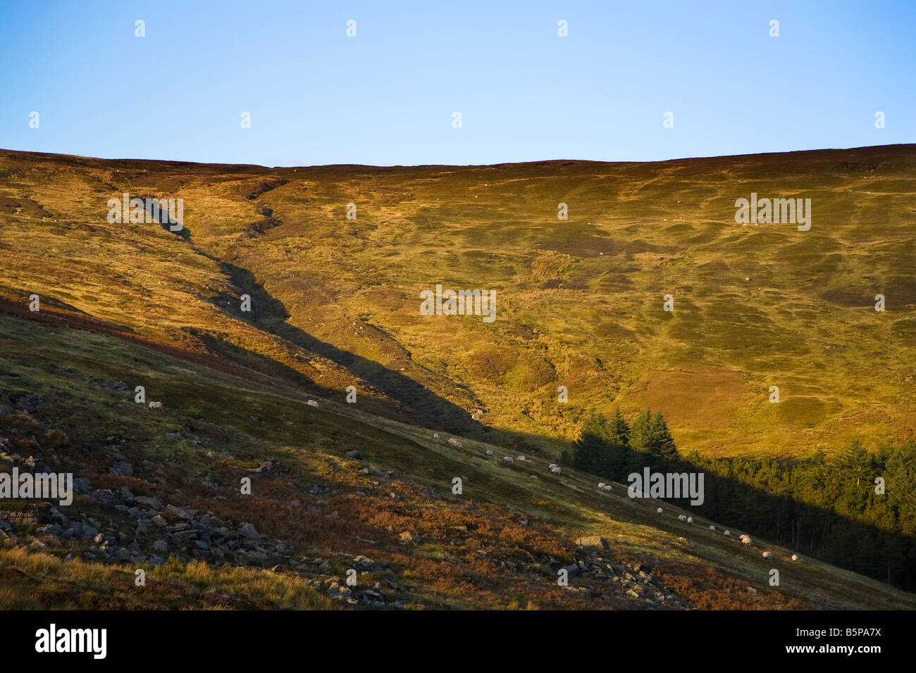 Valley and Moorland, Monavullagh Mountains, County Waterford, Ireland - Stock Image