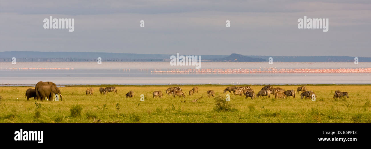 Panoramic view of Lake Manyara - Stock Image