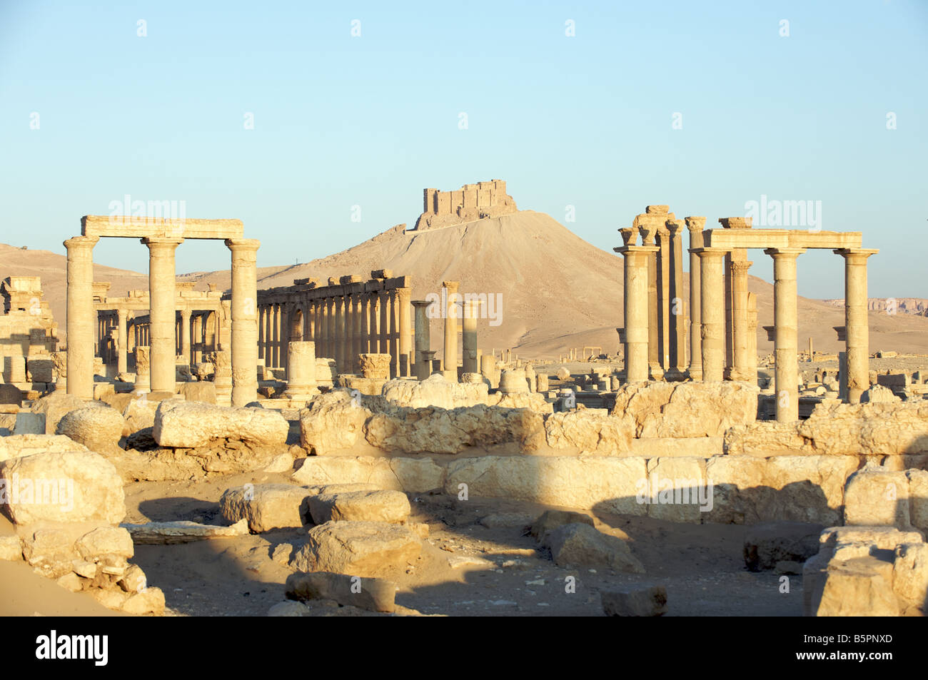 Palmyra Roman ruins with Qalaat ibn Maan castle in background - Stock Image