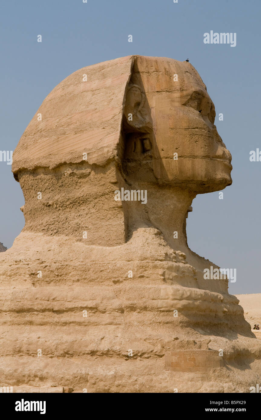 The Great Sphinx of Giza, believed to have been built by ancient Egyptians of the Old Kingdom during the reign of - Stock Image