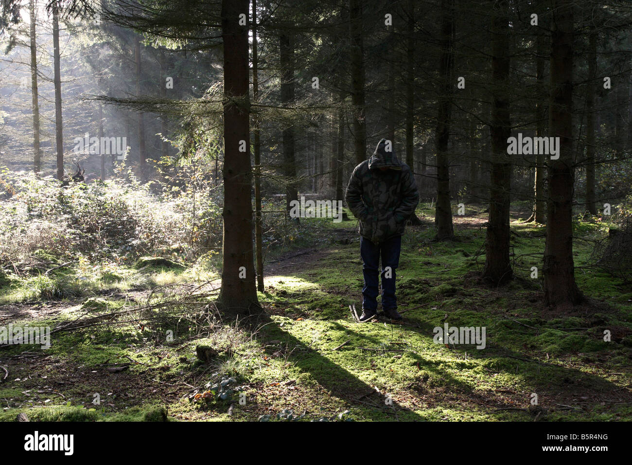 Man standing in wood wearing camouflage jacket - Stock Image