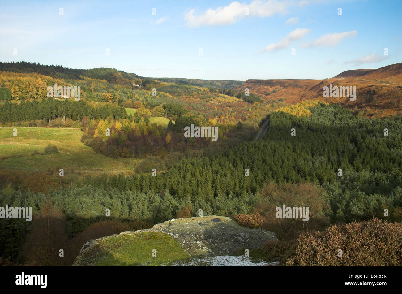 The view over Newton Dale from near Skelton tower in the North York Moors - Stock Image