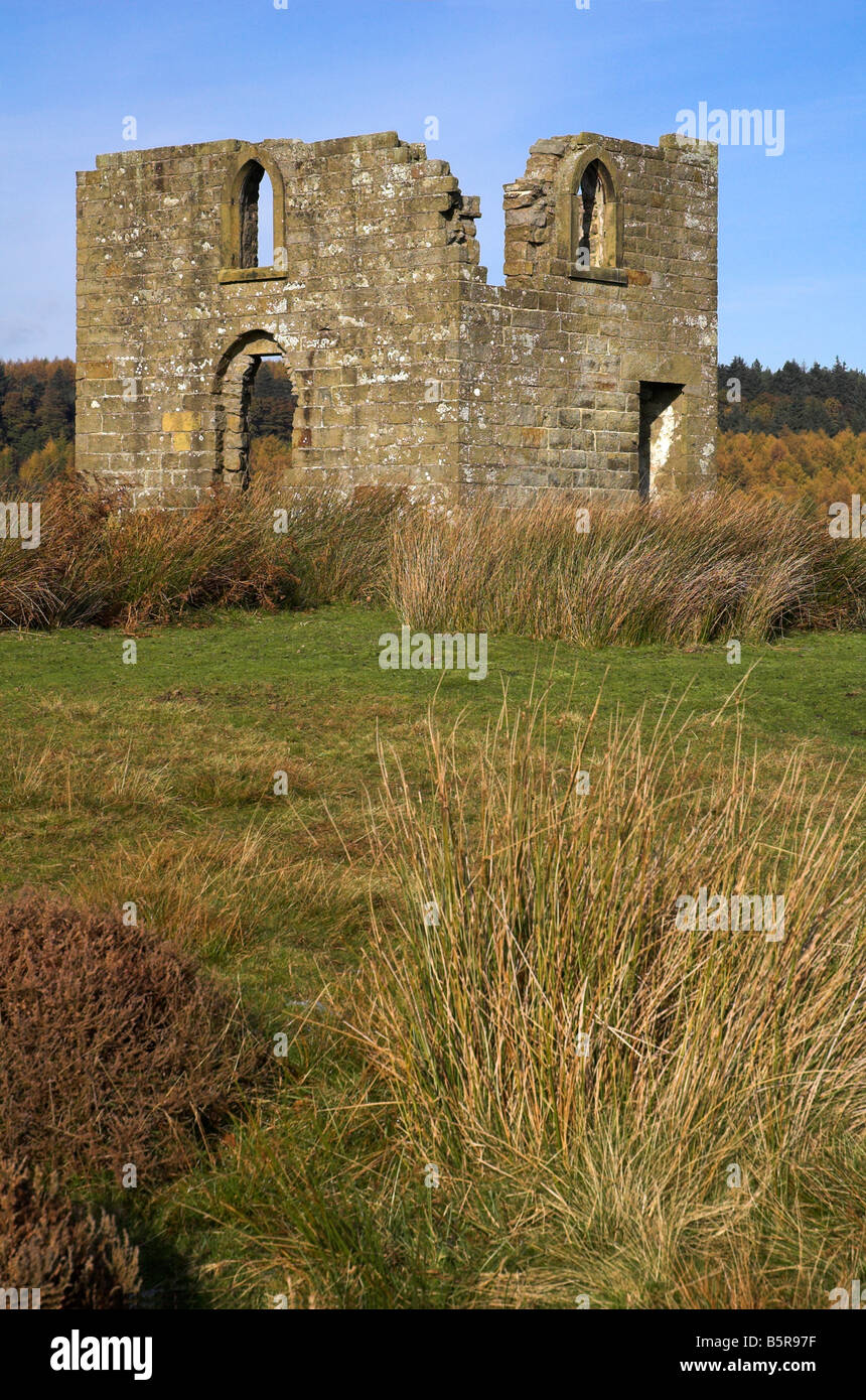 Skelton Tower, Nr Levisham in the North York Moors - Stock Image