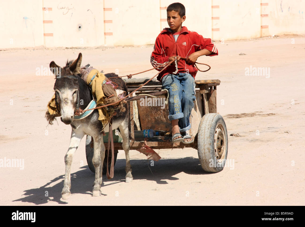 Donkey cart and driver in deserted streets of Dakhla Western Sahara - Stock Image