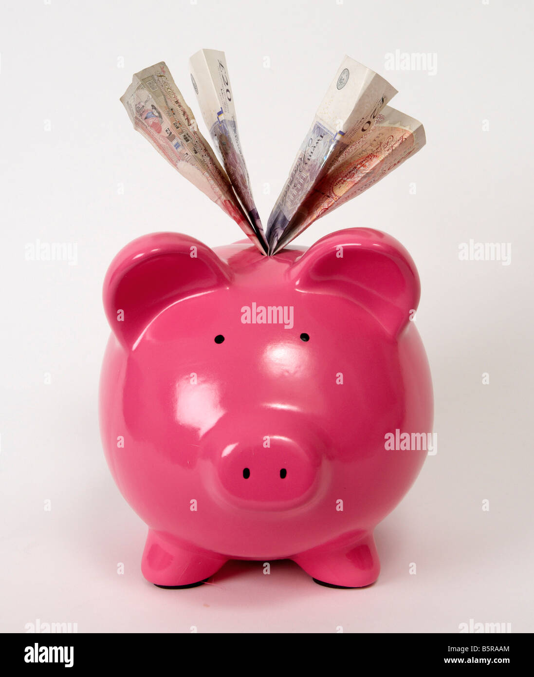 A pink piggy bank filled with pound sterling bank notes Stock Photo