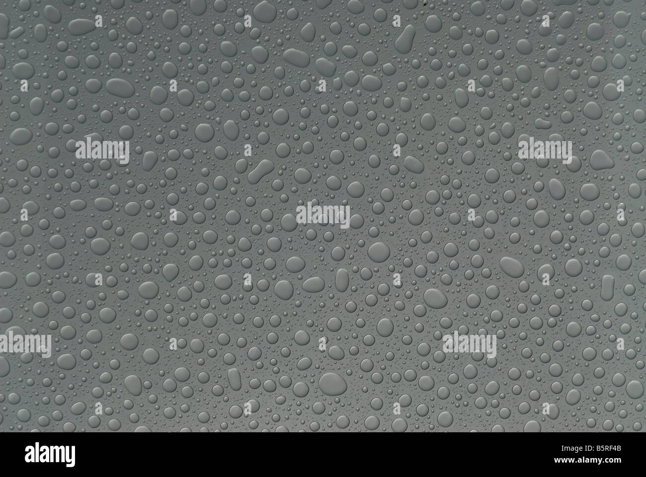 Raindrops on glass - Stock Image