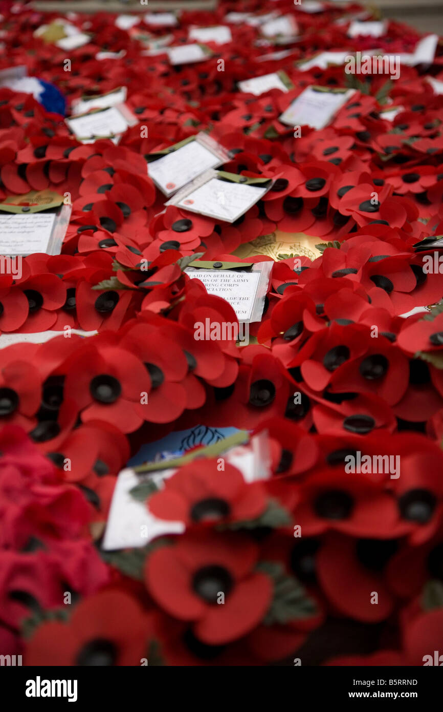 Hundreds of poppy wreaths laid at the Cenotaph Whitehall London - Stock Image
