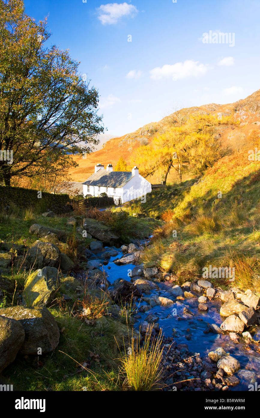 Whitewashed cottage farmhouse in the Lake District National Park, Cumbria, England, UK with stream or beck alongside - Stock Image