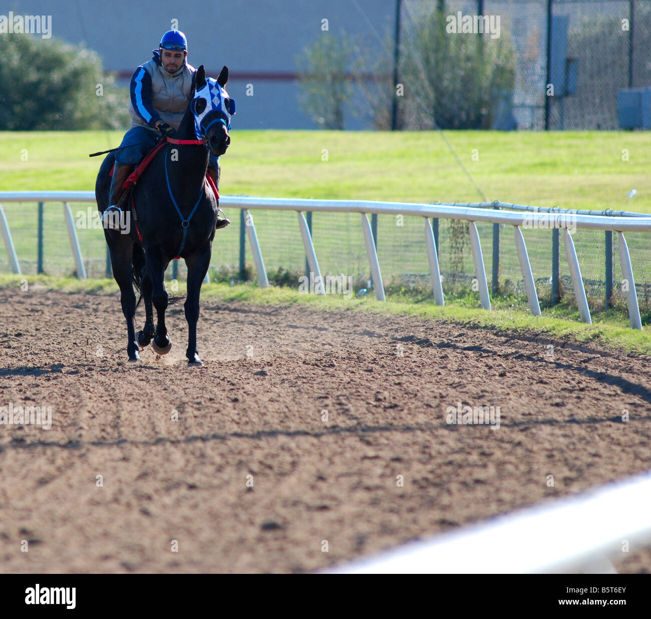 Jockey working out his horse at an American race horse track - Stock Image