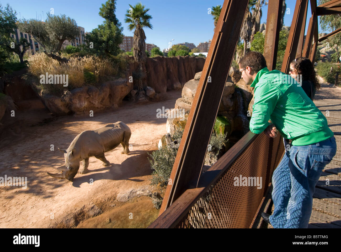 People looking at rhinoceros in enclosure from iron bridge platform in the Biopark zoo which opened in 2008 Valencia - Stock Image