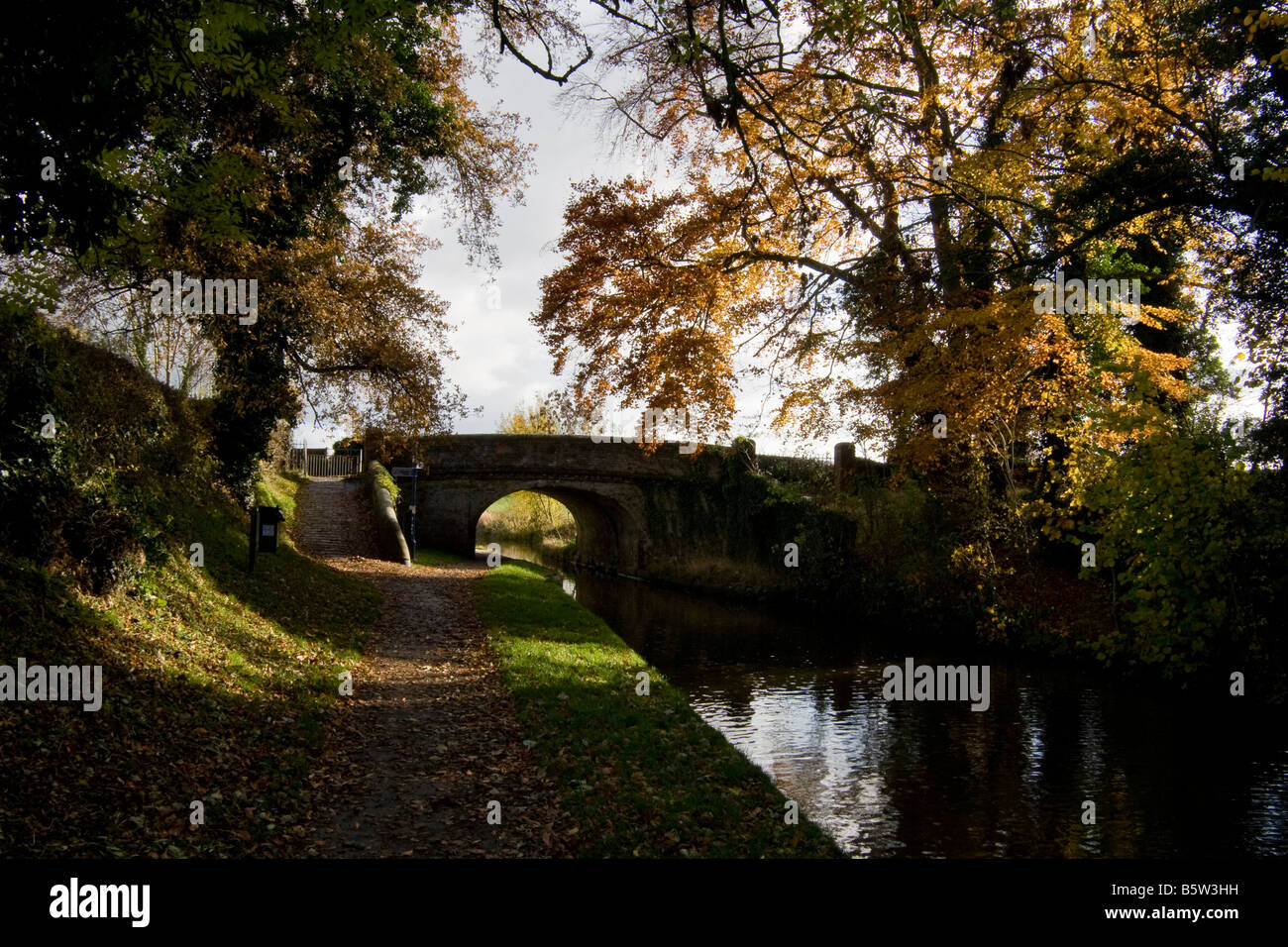 Towpath in autumnal colours alongside the Shropshire Union Canal near Ellesmere, Shropshire, England - Stock Image