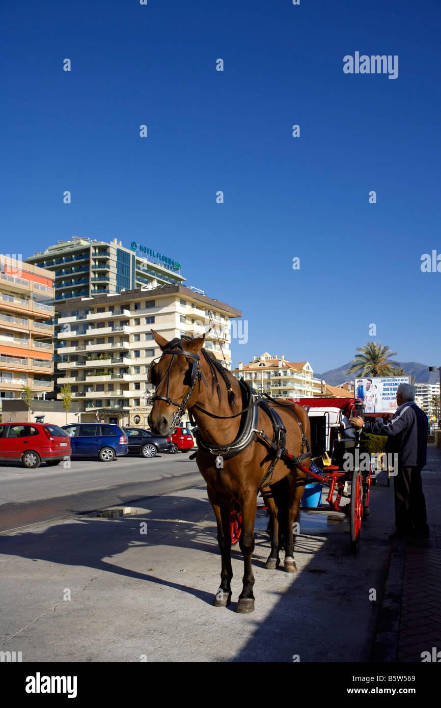 Horse drawn carriage on the Passeio Maritimo, Fuengirola, Costa del Sol, Spain - Stock Image