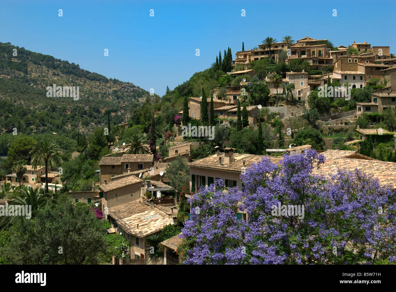 Deia with lilac tree in foreground, Mallorca, Balearics, Spain - Stock Image
