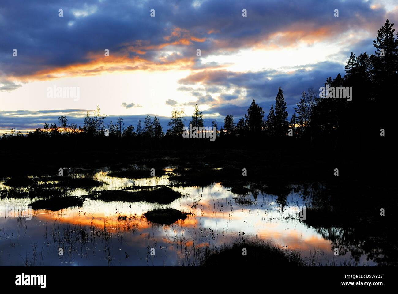 Evening mood in a swamp in Gällivare, Norrbotten, Lapland, Sweden, Scandinavia, Europe, September 2007 - Stock Image
