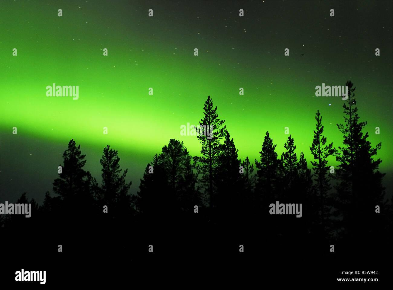 Northern Lights (aurora borealis) in Gällivare, Lapland, Norrbotten, Sweden, Scandinavia, Europe, September - Stock Image