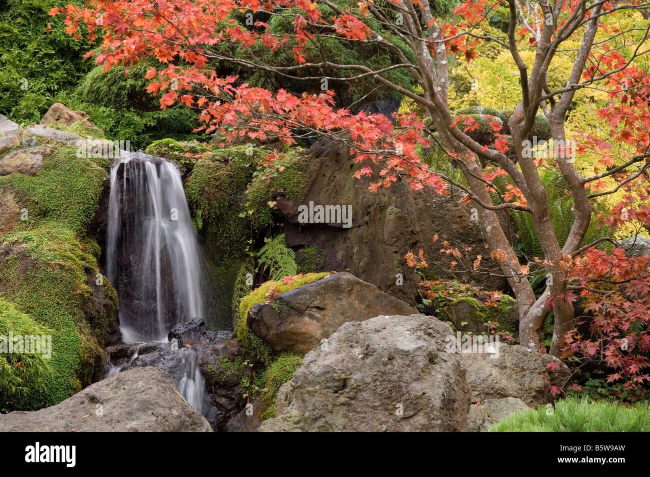 Japanese Tea Garden In Golden Gate Park San Francisco California