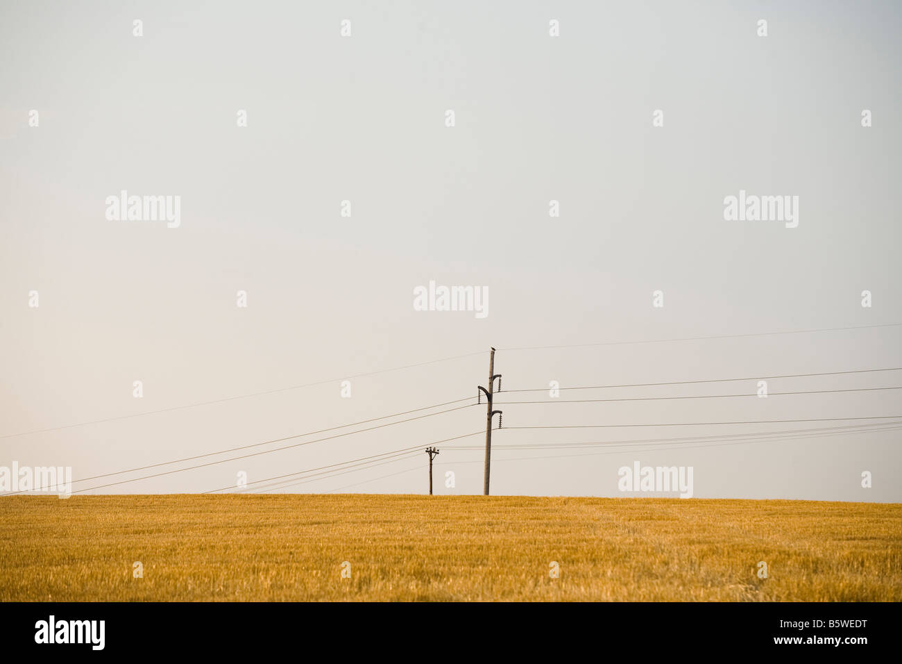 Telephone Poles Stock Photos Telephone Poles Stock Images Page 2