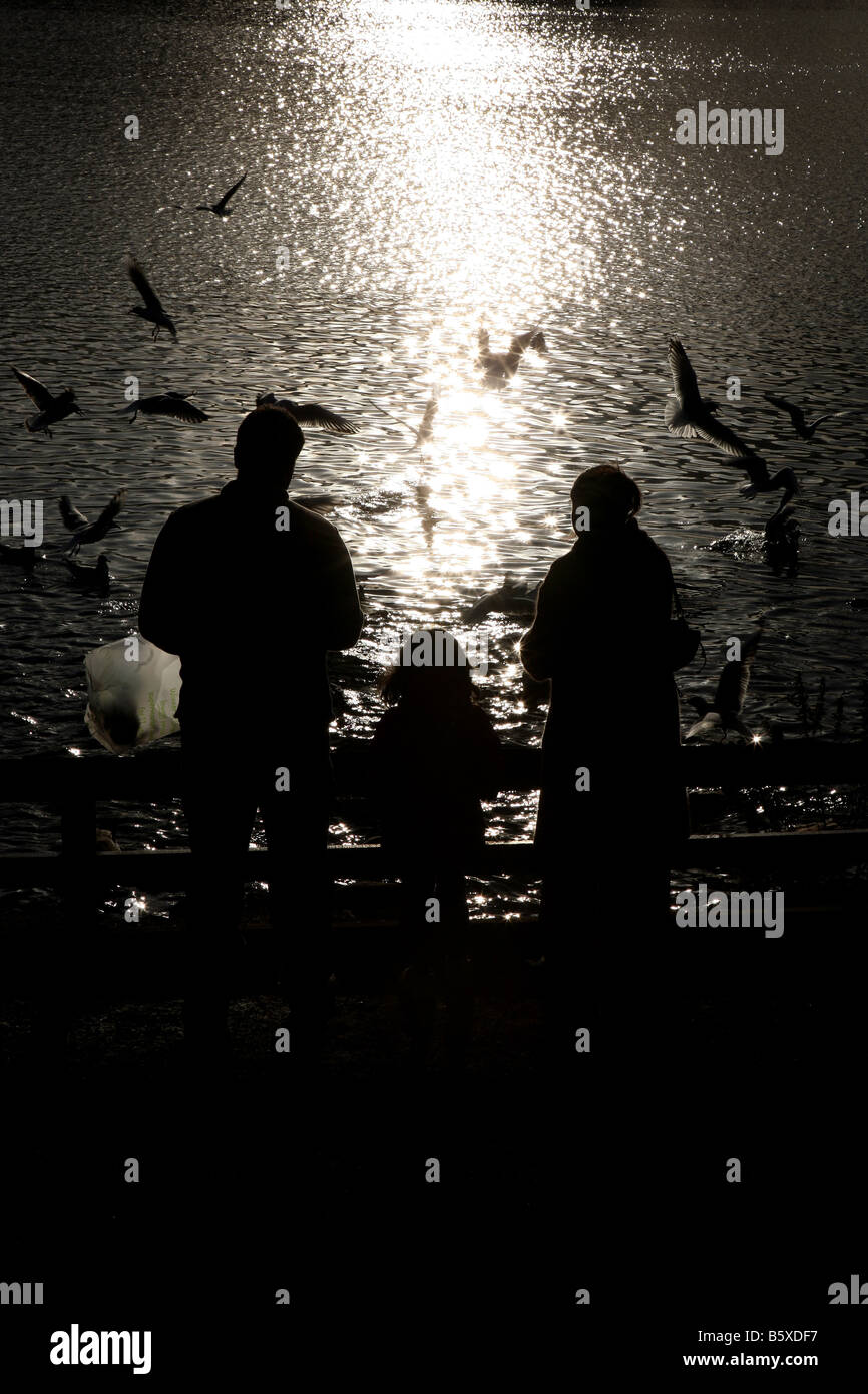 silhouette of a family feeding birds at chorlton water park manchester. - Stock Image