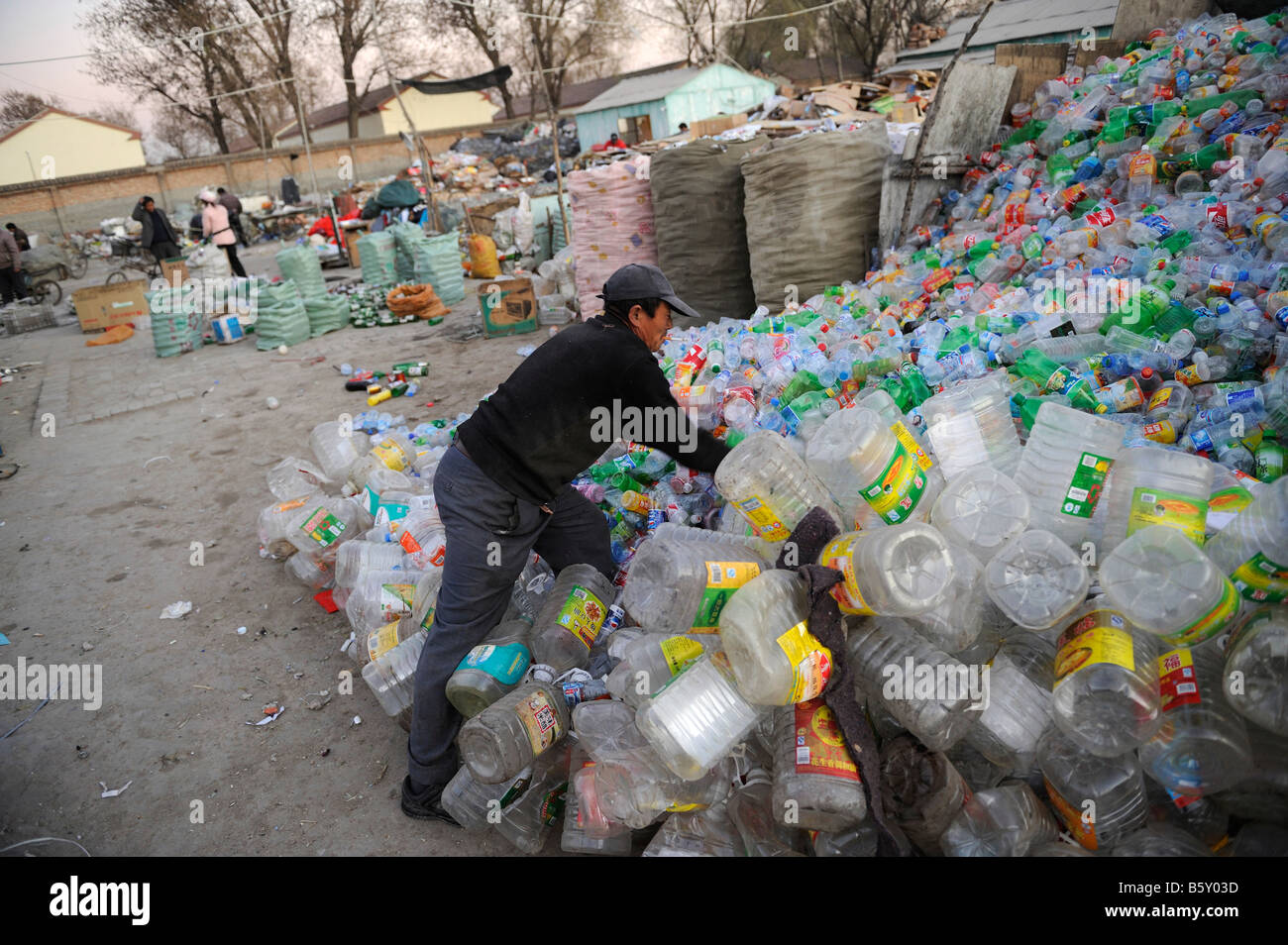 Chinese man collects plastics bottles at a recycling station in outskirts of Beijing, China. 20-Nov-2008 - Stock Image