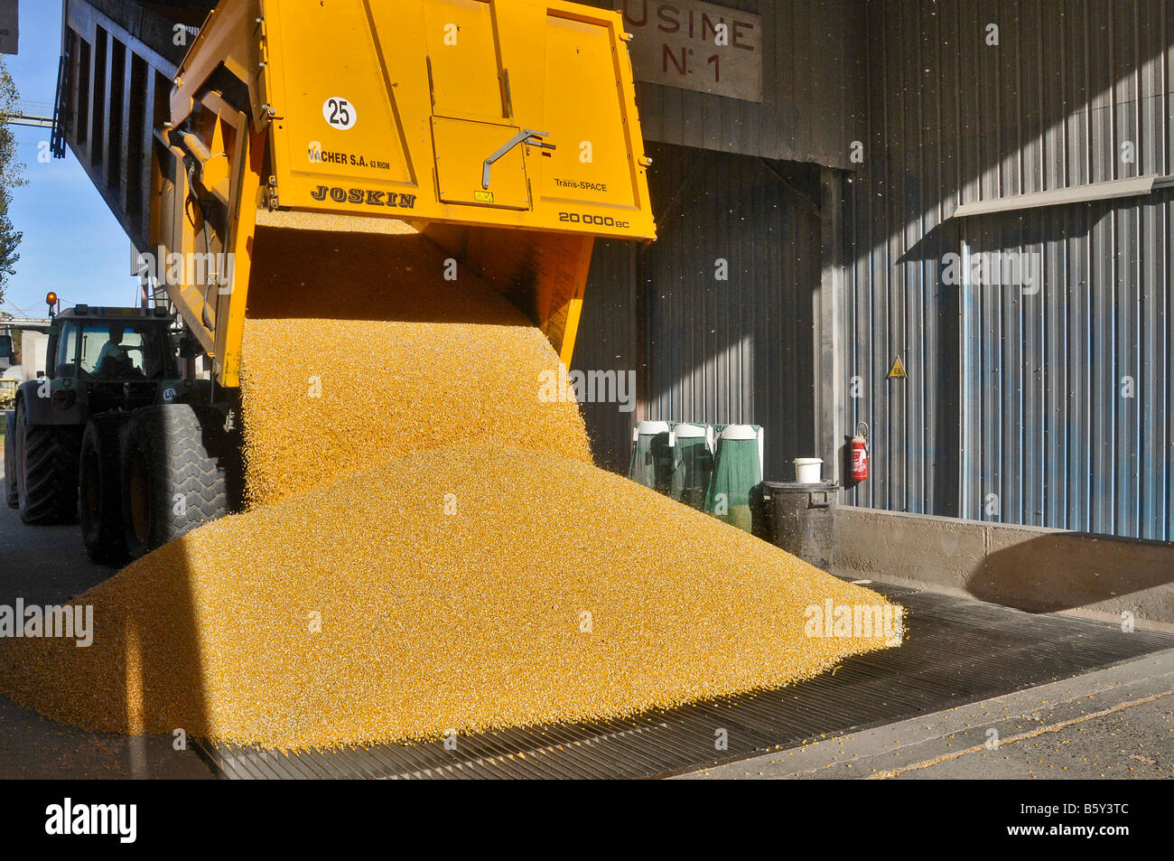 Unloading a trailer of corn in the hopper of the agricultural cooperative - Stock Image