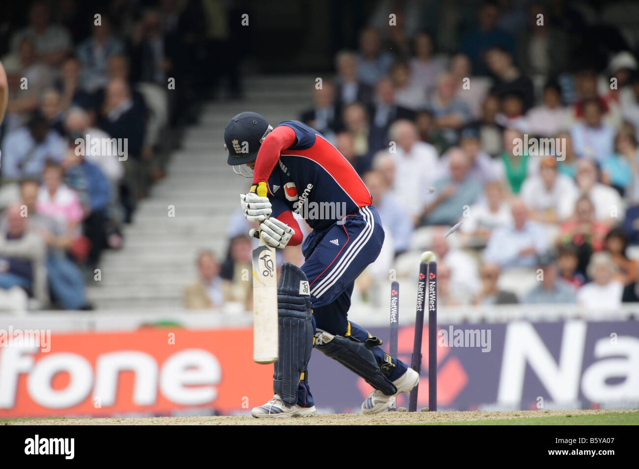 bowled out stumps one day cricket england v australia dejected loser lost failure - Stock Image