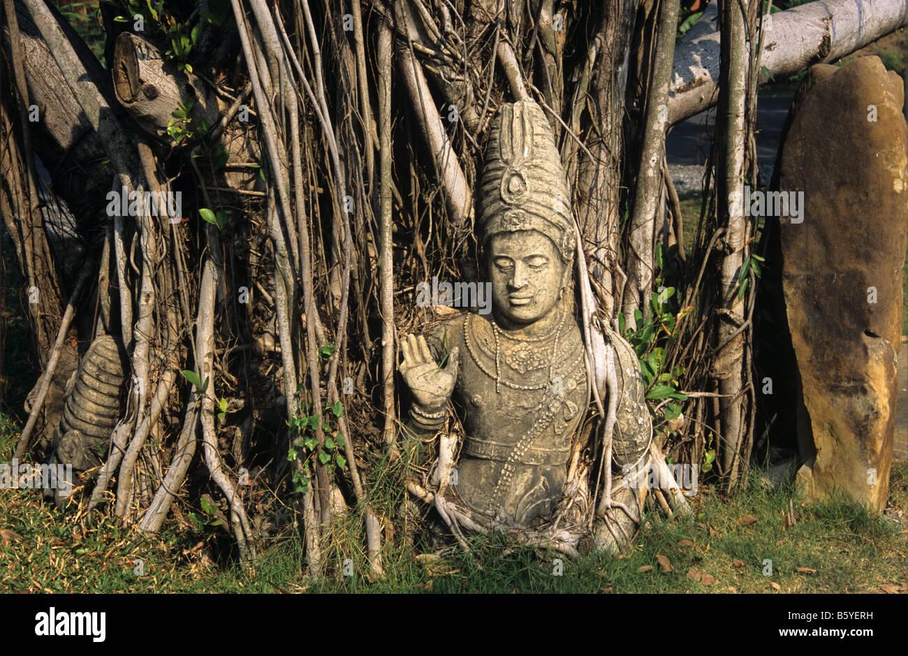 Hindu deity, Shiva, a c13-14th statue and banyan tree from Nakhon Si Thammarat, southern Thailand. Now at Ancient - Stock Image