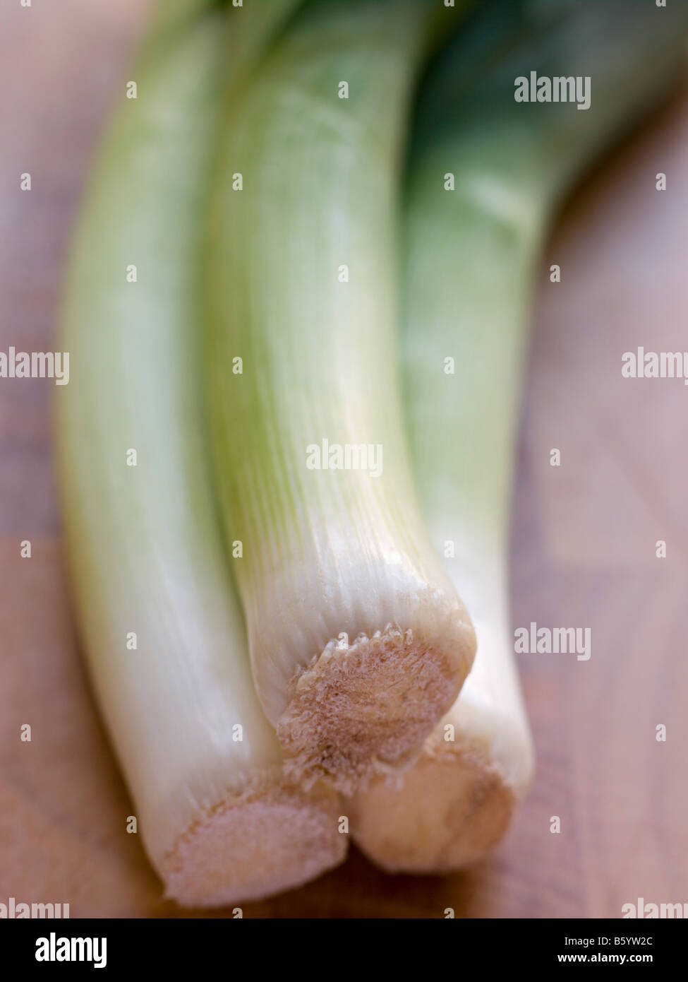 Group Of Leeks - Stock Image