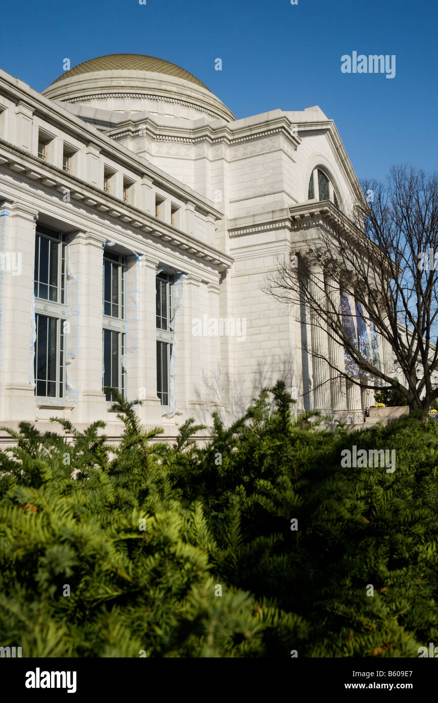 Smithsonian Museum of Natural History Washington D.C. - Stock Image