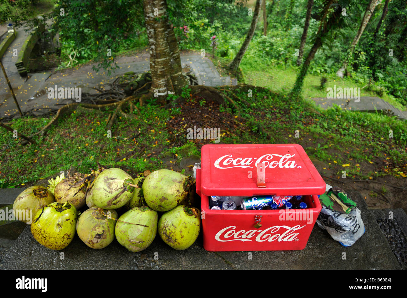 Special offer for drinks, coke or coconut, Ubud, Bali, Indonesia, Southeast Asia - Stock Image