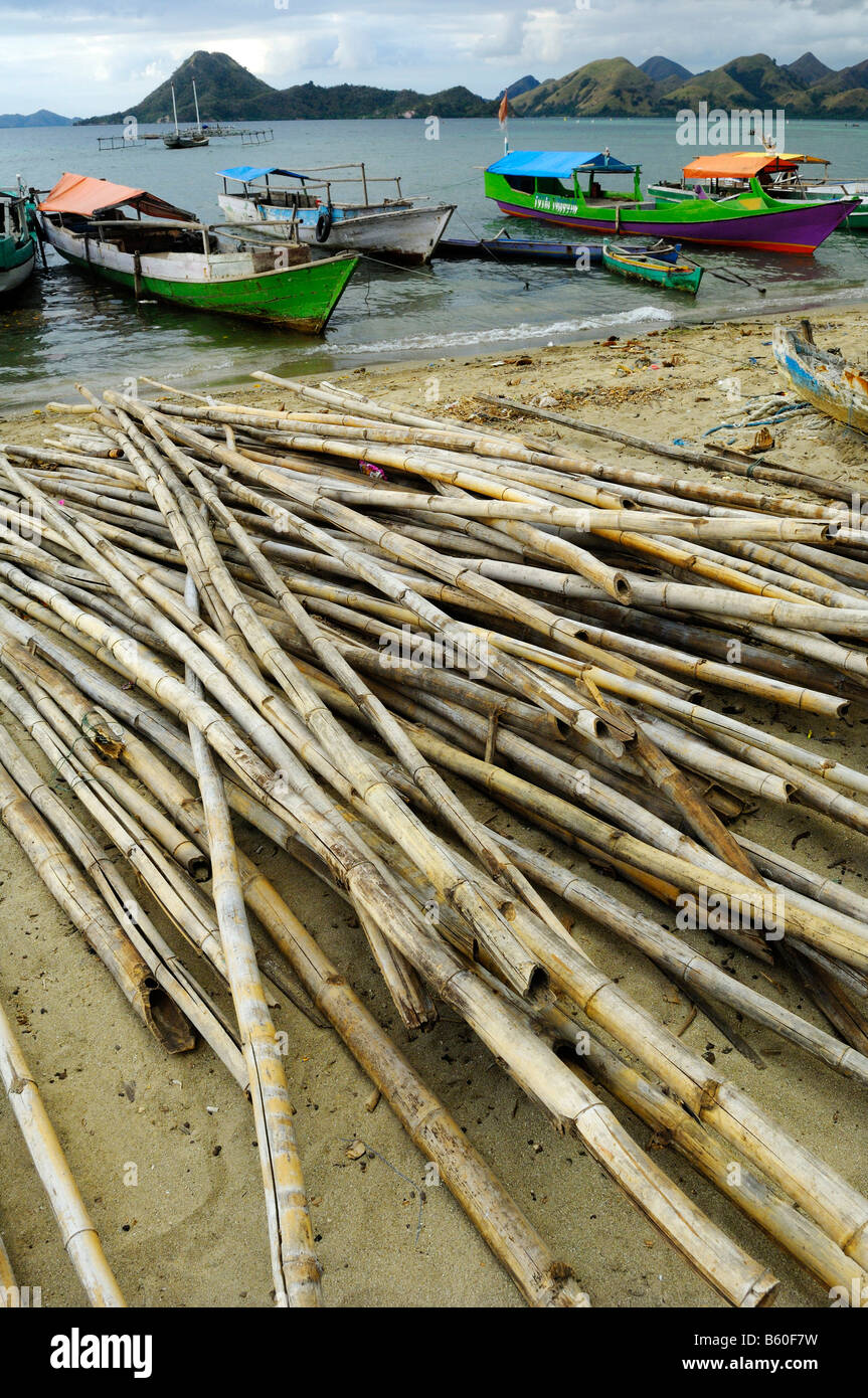 Bamboo sticks and fishing boats in a village of Philippine immigrants, Komodo National Park, World-Heritage-Site, - Stock Image