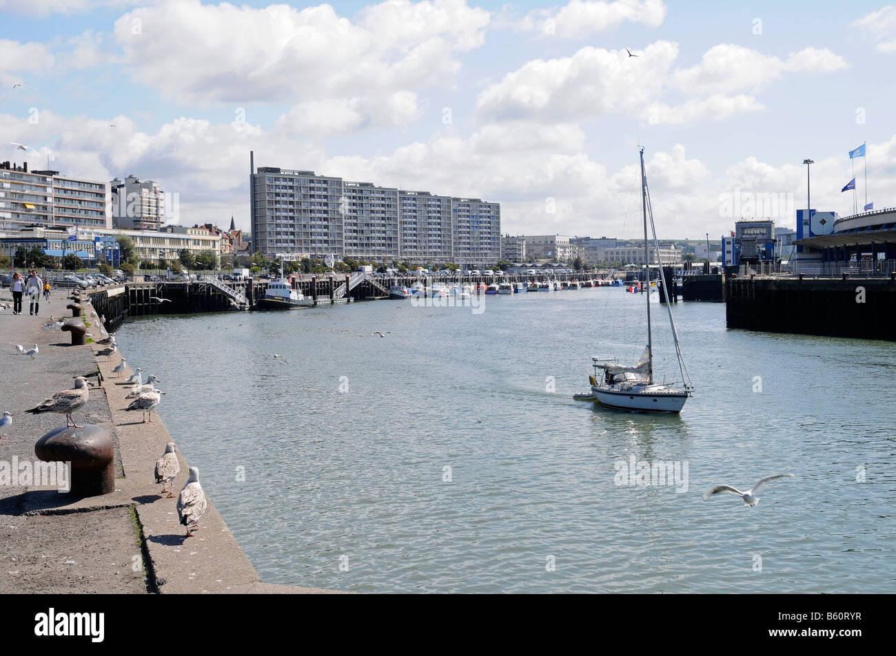 Seagulls, shore promenade, yacht, harbour, Boulogne sur Mer, Nord Pas de Calais, France, Europe - Stock Image