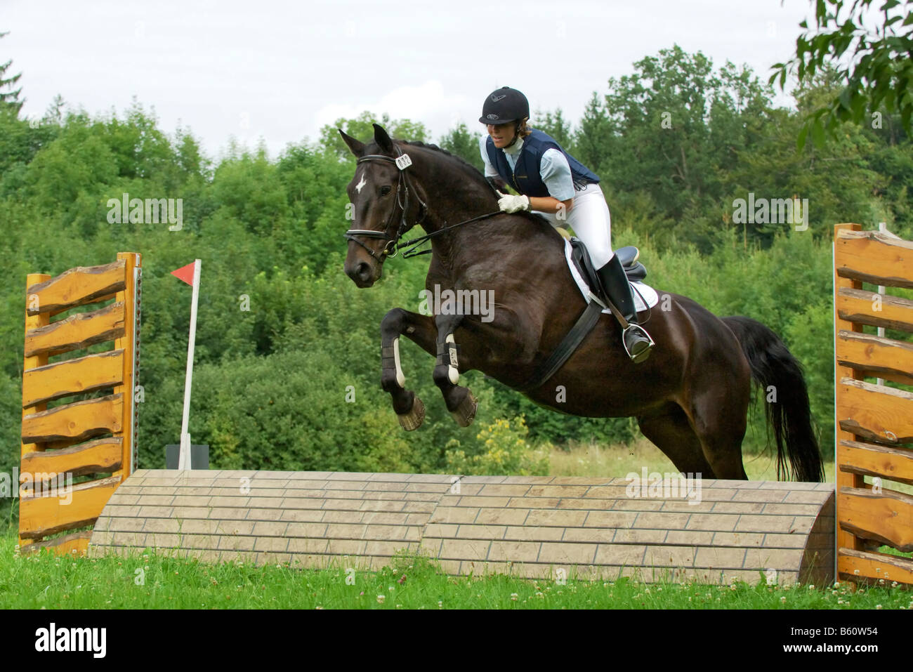 Young rider during an entry level cross country competition - Stock Image