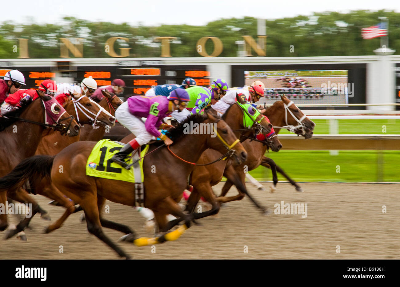 Group of thoroughbreds & jockey's straining to reach the finish line first. - Stock Image