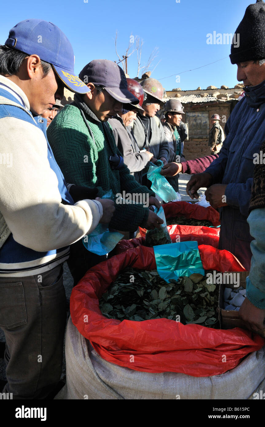 Miners buying coca leaves before working in the mine, Llallagua mining centre, Potosi, Bolivia, South America - Stock Image