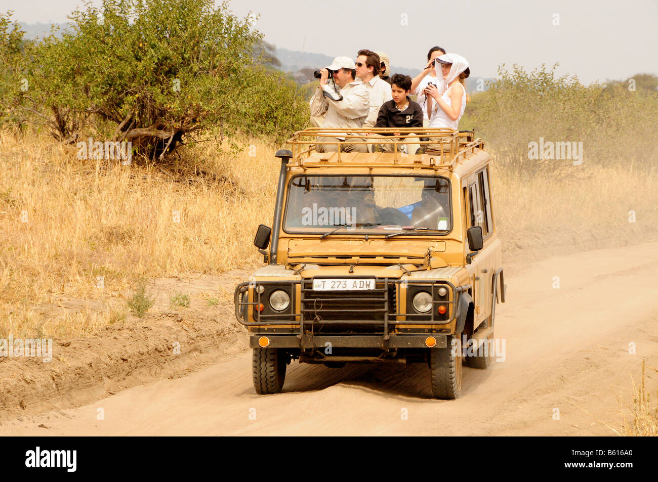 Tourists on safari in a four wheel drive vehicle, Tarangire-National Park, Tanzania, Africa - Stock Image