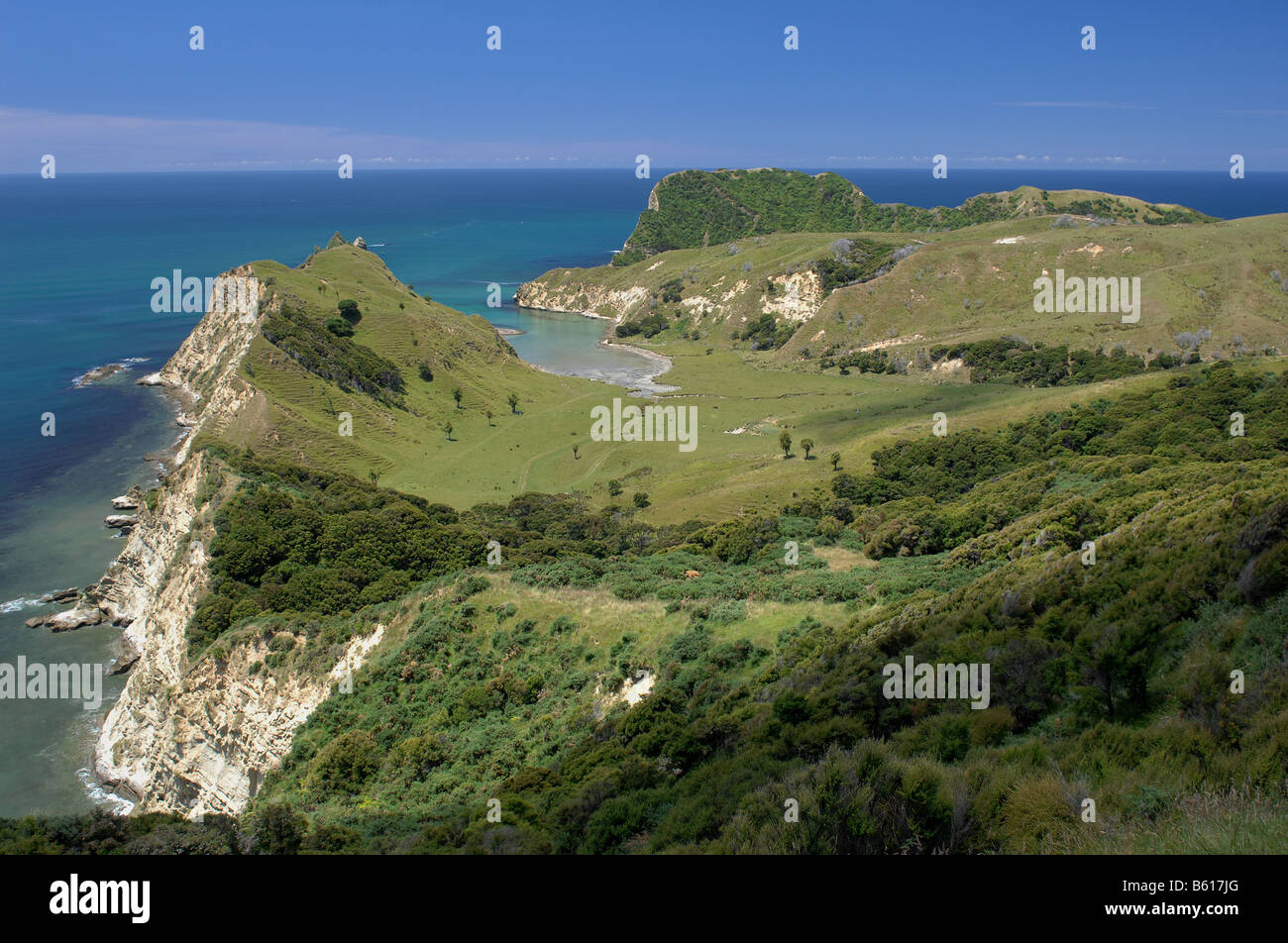 Coast, Nr Tolaga Bay, New Zealand - John Gollop - Stock Image