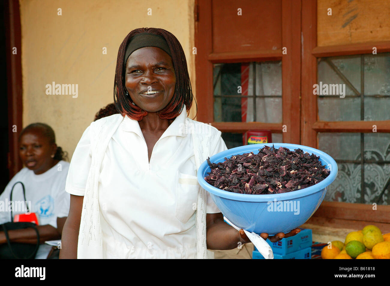 Woman holding a bowl while providing nutritional consultation, Women's Education Centre, Bamenda, Cameroon, - Stock Image