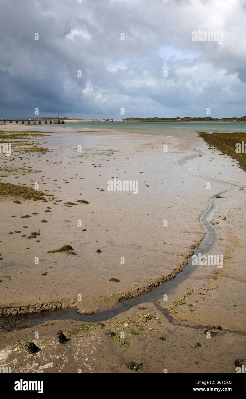 low tide in the taw estuary devon - Stock Image
