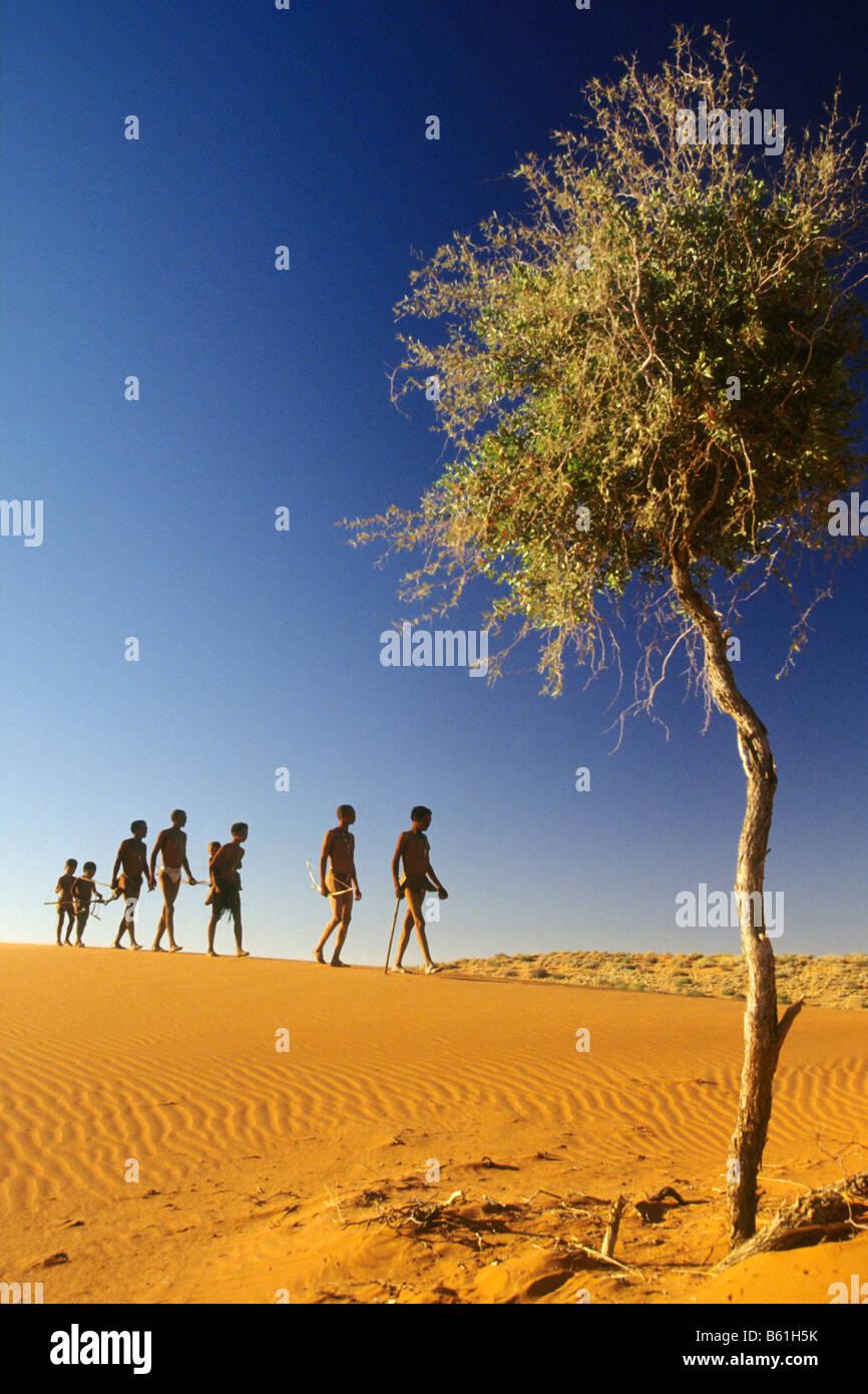 Group of bushman (San) on sand dune - Stock Image