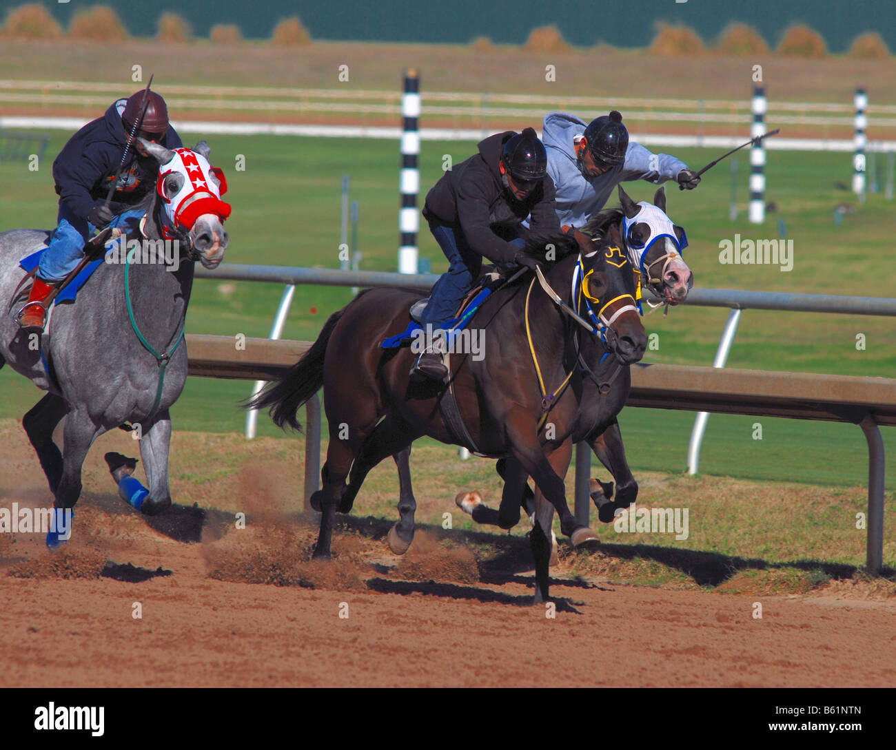 Horse racing at an American horse racing track - Stock Image