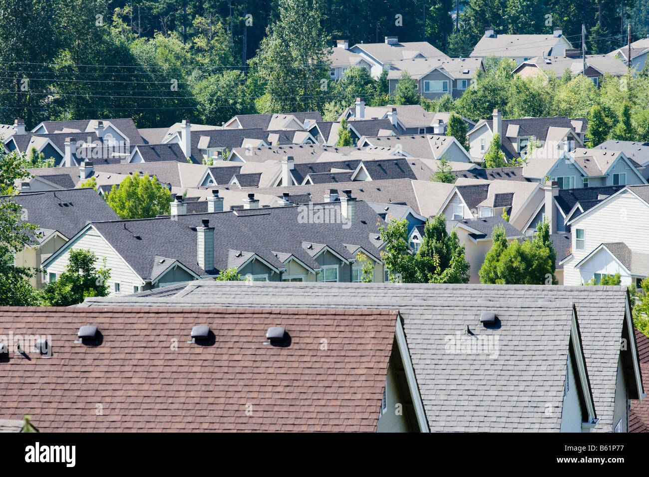 Rooftops of a housing development in the Issaquah Highlands Washington United States Stock Photo