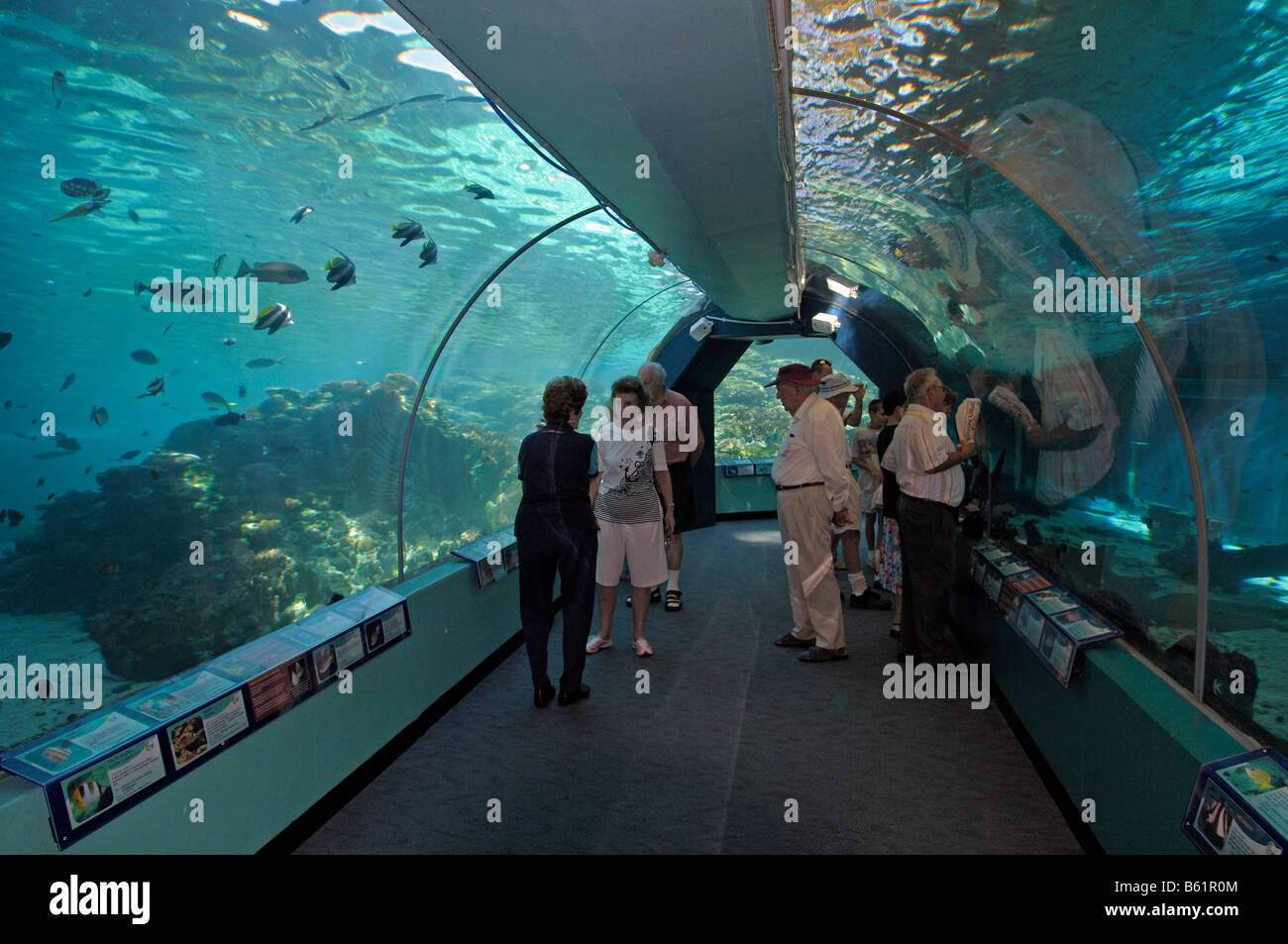 Tourists in the tunnel of the Reefworld HQ, the largest reef aquarium in the world, Townsville, Australia - Stock Image