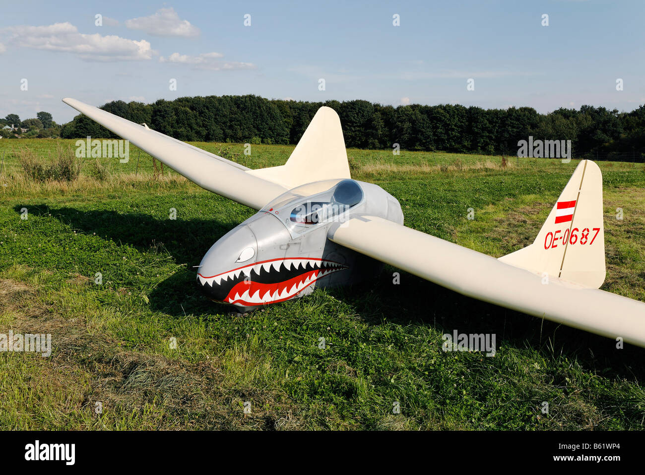 Original glider, flying wing without fuselage, cabin painted with a shark's mouth, Glider Airport, Aero Club - Stock Image