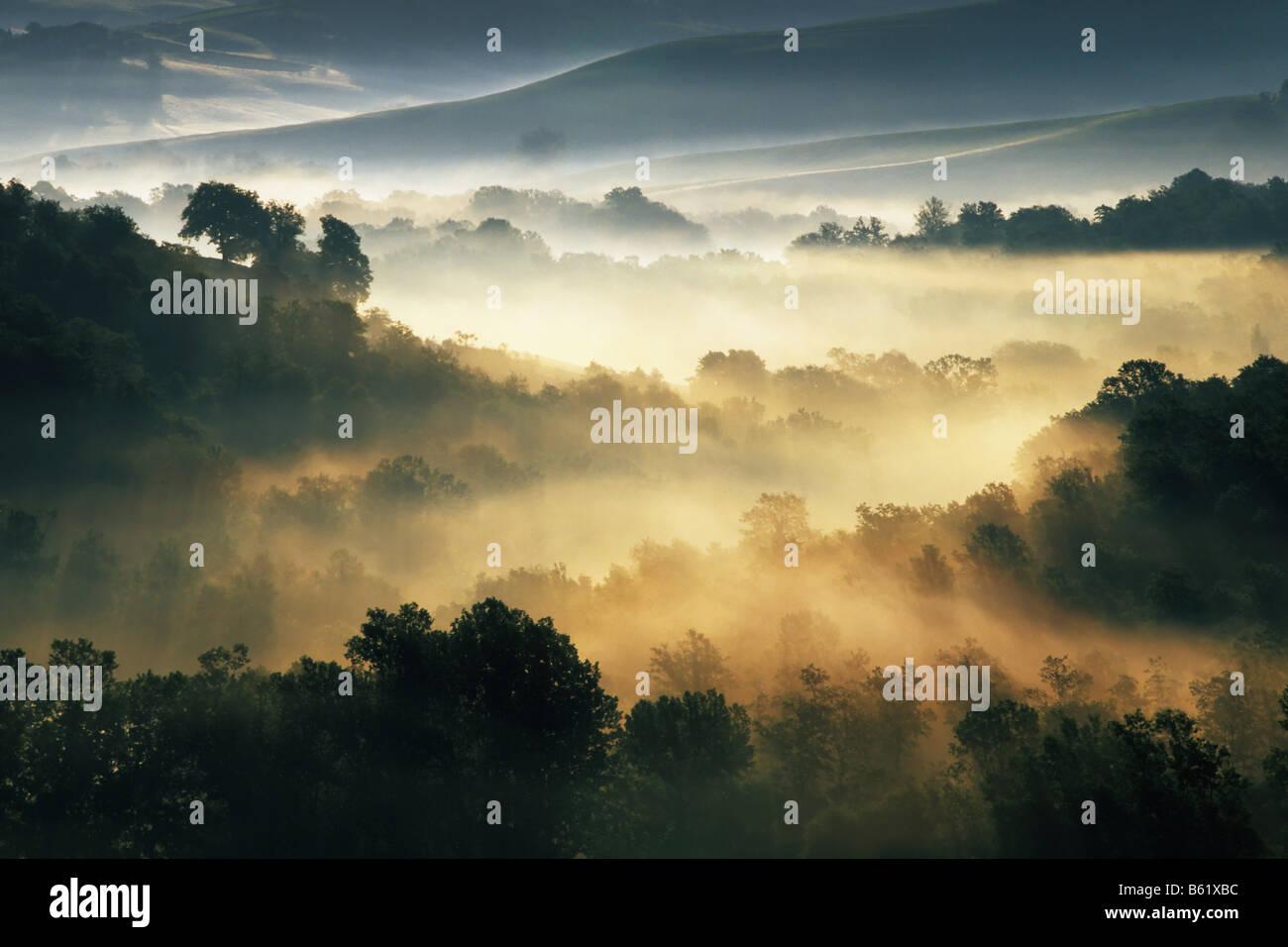 Early morning mist near Asciano, Tuscany, Italy, Europe Stock Photo