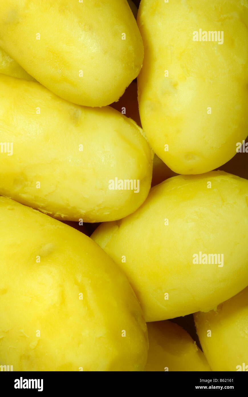 Potatoes, boiled and peeled Stock Photo