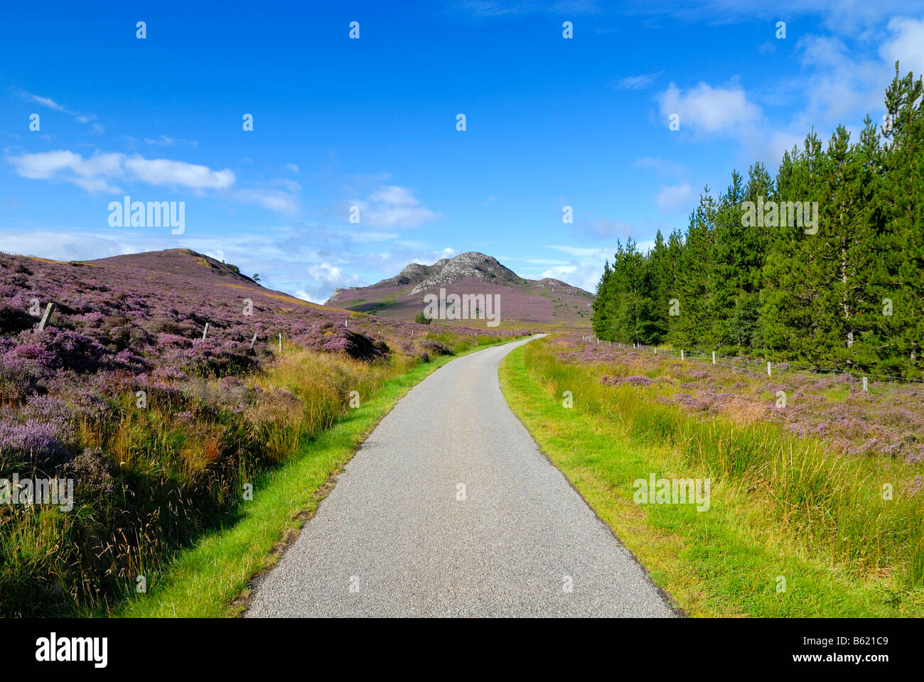 Single track road in the highlands, Scotland, Great Britain, Europe - Stock Image