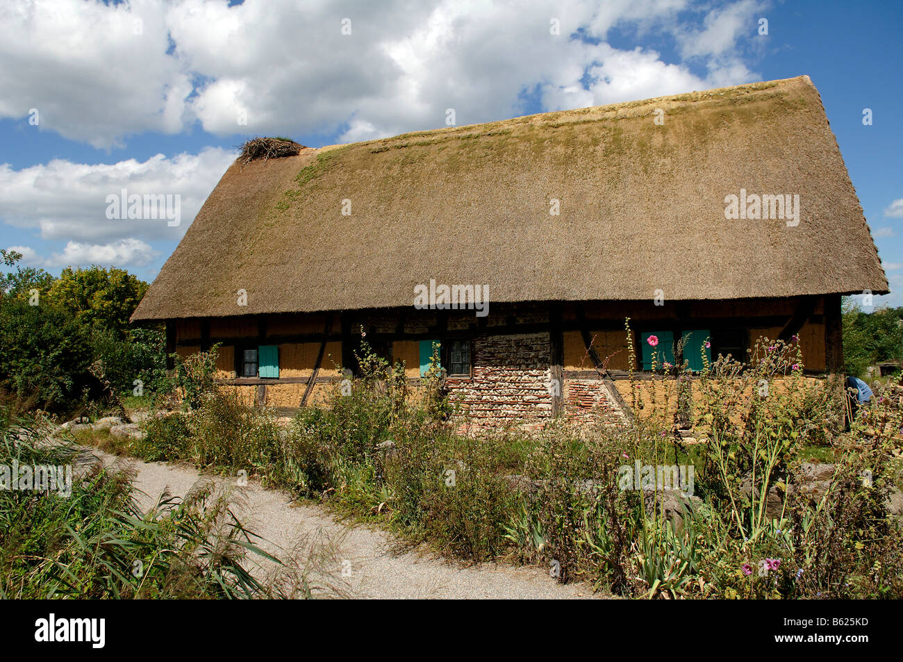 Historic wattle and daub half-timbered one family house with thatched roof 1561, eco-museum, Ungersheim, Alsace, - Stock Image