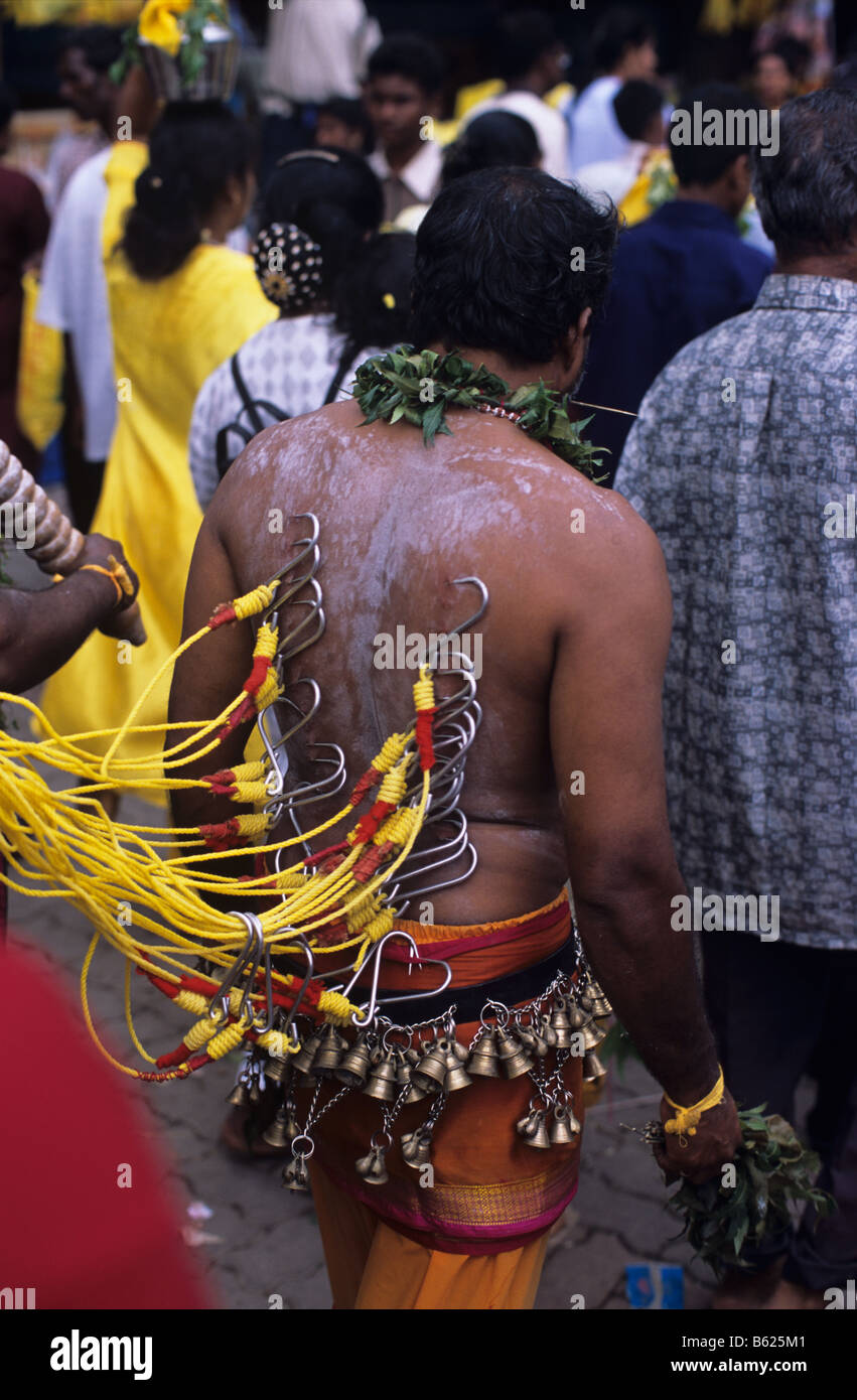 A Hindu penitent, his back pierced with meat hooks, at the annual Thaipusam Festival at Batu Caves, Kuala Lumpur, - Stock Image
