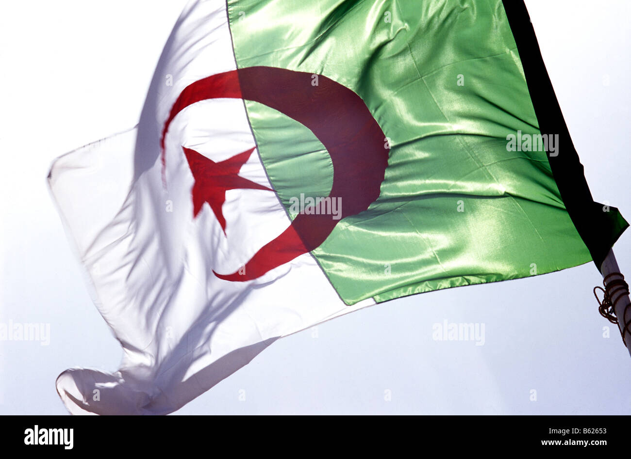 Flag, Algeria - Stock Image